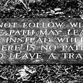 Do Not Follow Where The Path May Lead by Susie Weaver