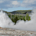 Falcon Over Old Faithful - Geyser Yellowstone National Park Wy Usa by Christine Till