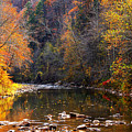 Fall Color Elk River by Thomas R Fletcher