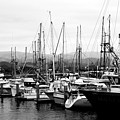 Fishing Boats . 7d8208 by Wingsdomain Art and Photography