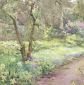 Garden Path by Mildred Anne Butler