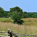 Going To Appomattox Court House by Teresa Mucha