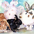 Good Hare Day by Pat Saunders-White