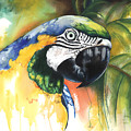 Green Parrot by Anthony Burks Sr