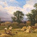 Harvest Time by GV Cole