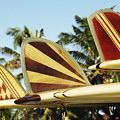 Hawaiian Design Surfboards by Vince Cavataio - Printscapes