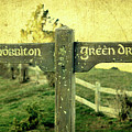 Hobbiton Signage by Linde Townsend