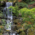 Japanese Garden Waterfall by Sandra Bronstein