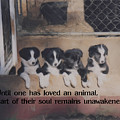 Love For Animals by Smilin Eyes  Treasures
