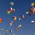 Many Vividly Colored Hot Air Balloons by Ralph Lee Hopkins