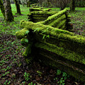 Mossy Fence 5 by Bob Christopher