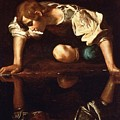 Narcissus by Pg Reproductions