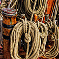 Nautical Knots 16 by Mark Myhaver