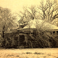 Old School House by Julie Hamilton