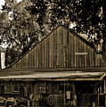 Old Spanish Sugar Mill Sepia by DigiArt Diaries by Vicky B Fuller