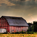 Ontario Barn In The Sun by Tim Wilson