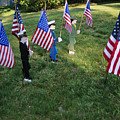 Patriotic Lawn Ornaments Represent by Stephen St. John
