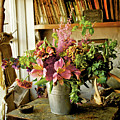 Potting Shed Flowers by Gerry Walden