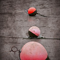 Red Buoys  by Svetlana Sewell