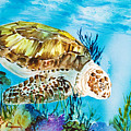 Reef Surfin by Tanya L Haynes - Printscapes