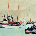 Schooners At Anchor In Key West by Winslow Homer