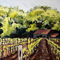 Shed In A Vineyard by Sarah Lynch