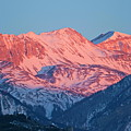 Snowy Mountain Range With A Rosy Hue At Sunset by Sami Sarkis