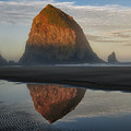Sunrise On Haystack Rock - Oregon by Sandra Bronstein