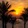 Sunrise Over The Red Sea by Jane Rix