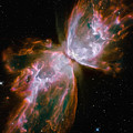 The Butterfly Nebula by Stocktrek Images
