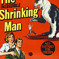 The Incredible Shrinking Man, Bottom by Everett