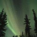 The Northern Lights by Maria Stenzel