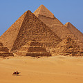 The Pyramids In Egypt by Dan Breckwoldt