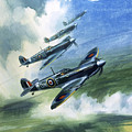 The Supermarine Spitfire Mark Ix by Wilfred Hardy