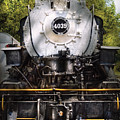 Train - Engine - 4039 American Locomotive Company  by Mike Savad
