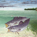 Wade Fishing For Speckled Trout by Kevin Brant