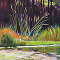 Water Garden Landscape by Melody Cleary