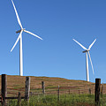 Wind Energy Wind Turbines In A Field Washington State. by Gino Rigucci