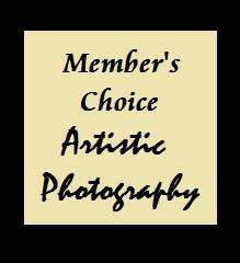 Member Choice of Artistic Photography