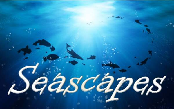 Seascapes Contest