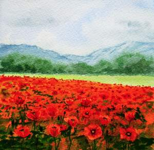 Limited Time Promotion  Red Poppy Field Print