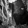 Ansel Adams 3 Per Day - Black and White Only