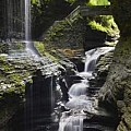 Finger Lakes and other New York State Parks