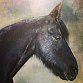 Horse Art and Equestrian Portrait - Art Group