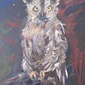 Owl Watchers - Art Group