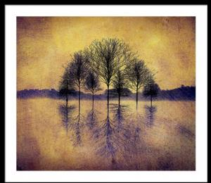 New Art Released - Reflecting Trees