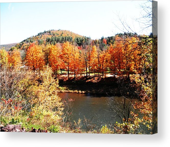 Trees Acrylic Print featuring the photograph Autumn By The River by Jeanette Oberholtzer