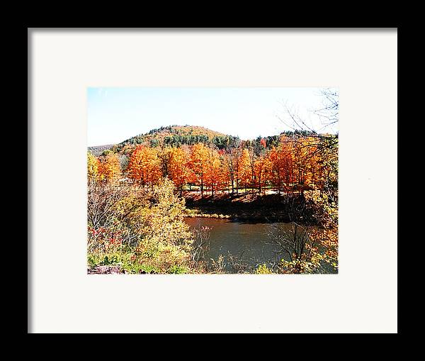 Trees Framed Print featuring the photograph Autumn By The River by Jeanette Oberholtzer