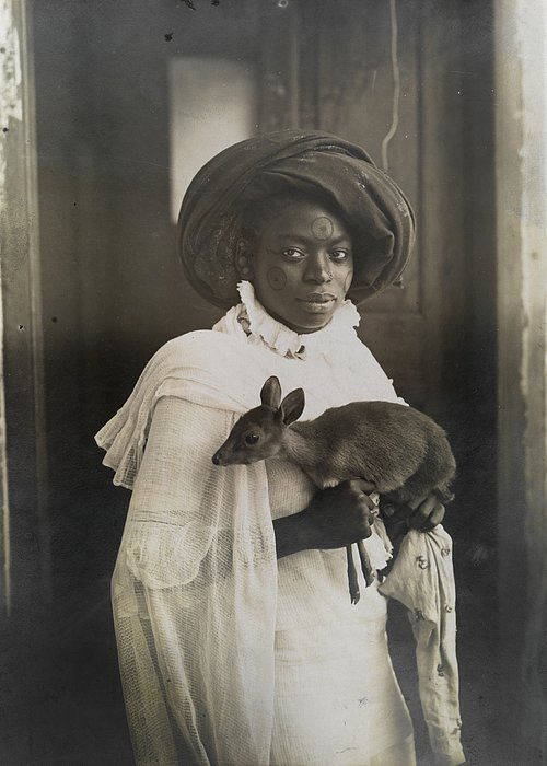 Black And White Greeting Card featuring the photograph A Young Kenyan Woman Holds Her Pet Deer by Underwood And Underwood