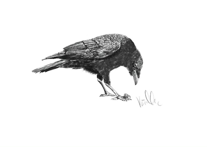 Crow Greeting Card featuring the painting Caw Of The Wild by Barb Kirpluk